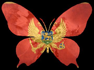 montenegroorn-d5rvq74